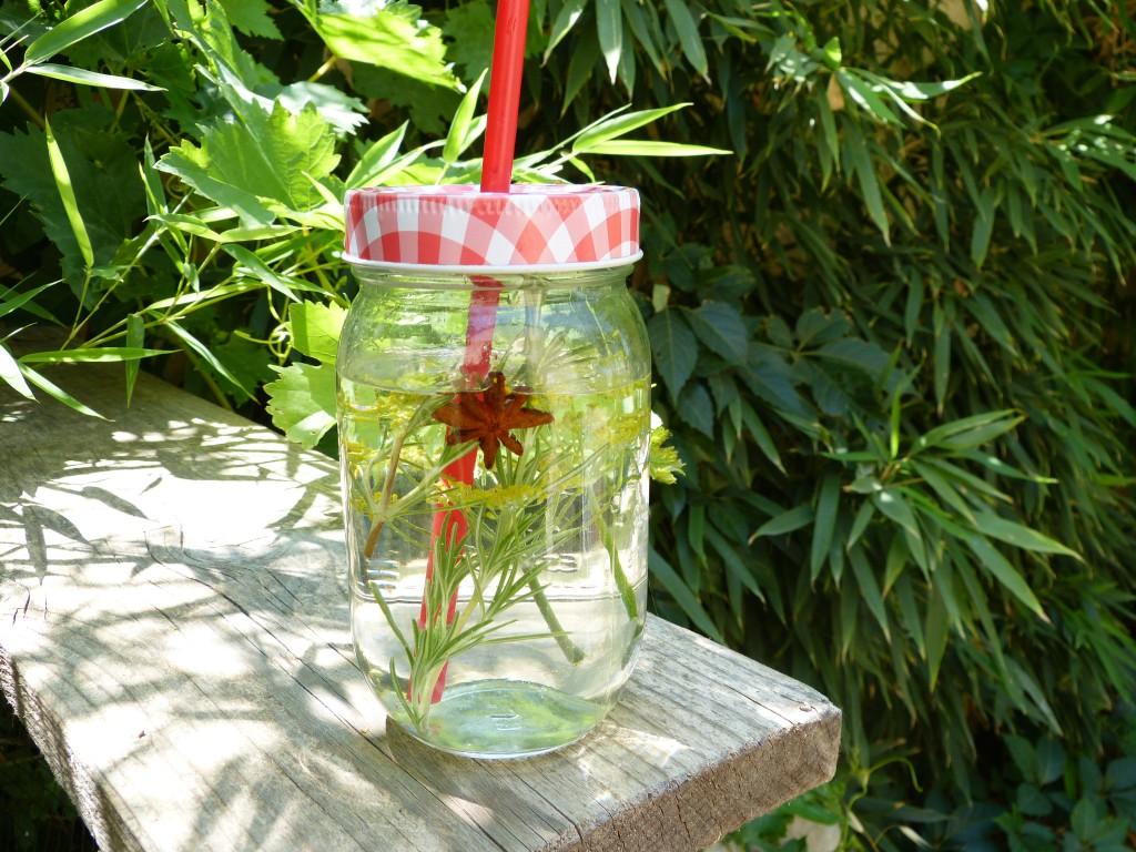 recette eau detox fenouil badiane romarin