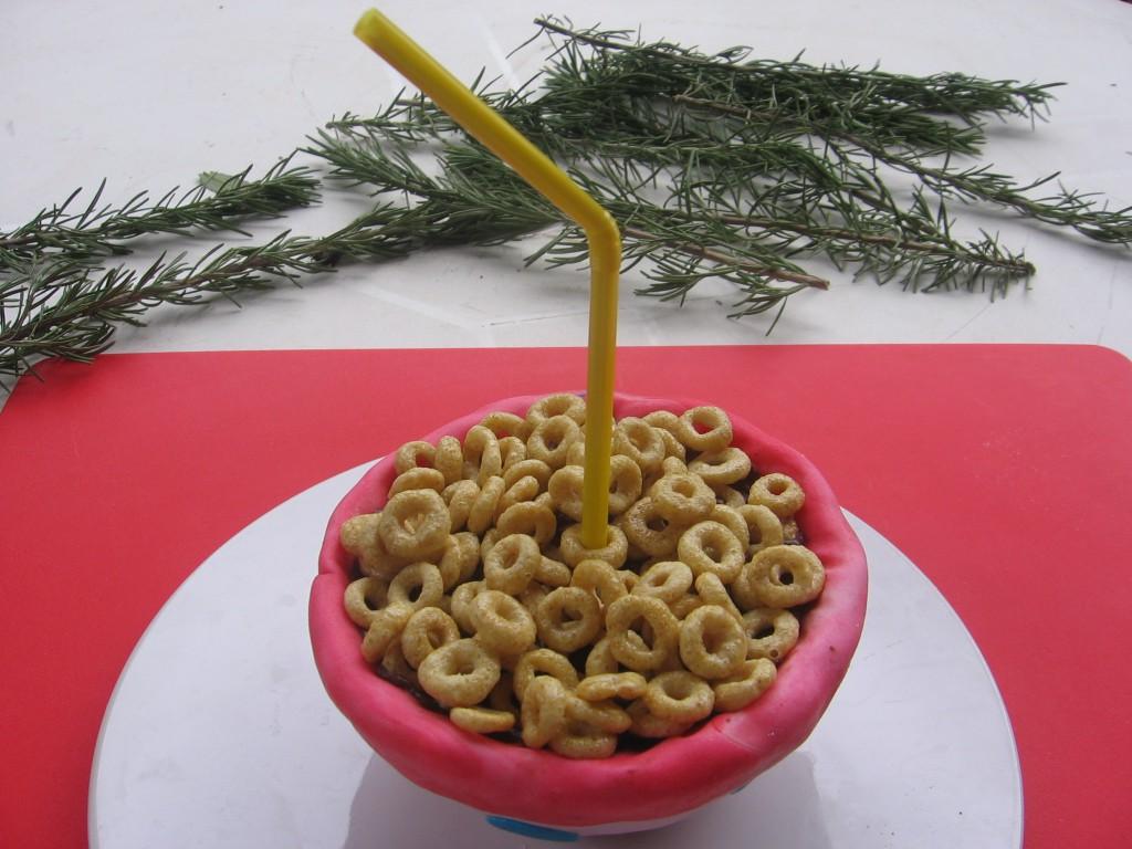gravity cake bol cereales 7